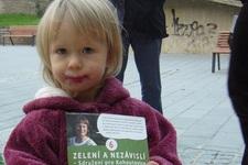 zelena_holcicka